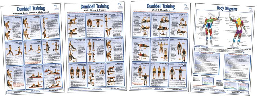 York 401 Multi Gym Exercise Chart - Exercise routines york