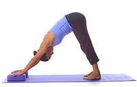 yoga downward dog with blocks